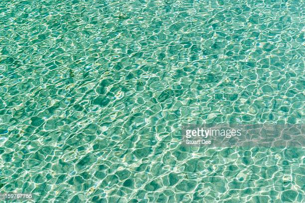Clear waters of Lake Tahoe, California, USA