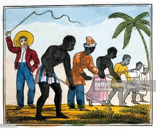 'Clearing Away the Weeds' 1826 From 'The Black Man's Lament or How to Make Sugar' by Amelia Opie