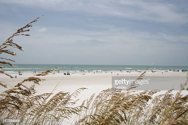 clearwater beach, florida - clearwater beach stock pictures, royalty-free photos & images