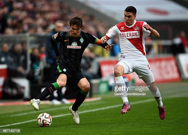 Clemens Fritz of SV Werder Bremen and Jonas Hector of 1 FC Koeln battle for the ball during the Bundesliga match between 1 FC Koeln and SV Werder...