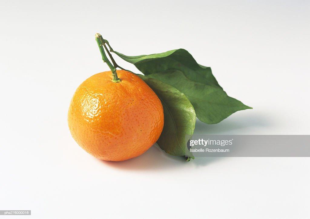 Clementine : Stockfoto