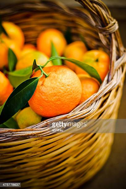 clementines - annfrau stock pictures, royalty-free photos & images