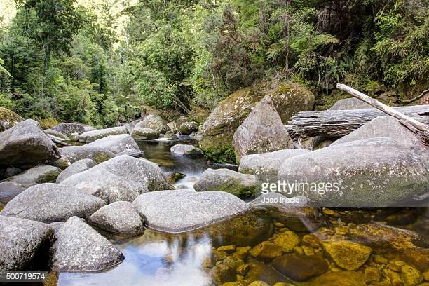 Cleopatra's Pool, Abel Tasman National Park