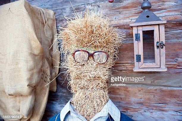 clerk dummy - scarecrow agricultural equipment stock photos and pictures