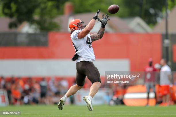 Cleveland Browns fullback Danny Vitale makes a catch during drills at the Cleveland Browns Training Camp on July 29 at the at the Cleveland Browns...