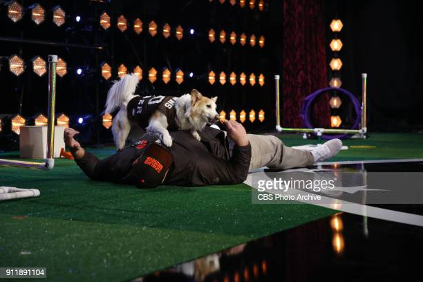 Cleveland Browns guard Kevin Zeitler and his dog Amber compete to be crowned the MVP MOST VALUABLE PERFORMER during a onehour interactive talent show...