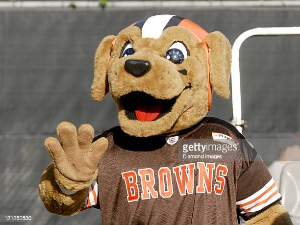Cleveland Browns Mascot Chomps greets fans during a training camp practice on August 16 2011 at the Cleveland Browns Training Facility in Berea Ohio