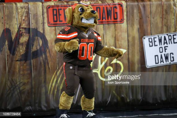 Cleveland Browns mascot Chomps on the field during the fourth quarter of the National Football League game between the New York Jets and Cleveland...