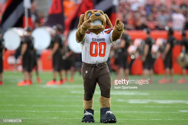 Cleveland Browns mascot Chomps on the field prior to the National Football League preseason game between the Buffalo Bills and Cleveland Browns on...