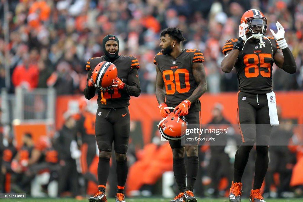 NFL: DEC 23 Bengals at Browns : ニュース写真