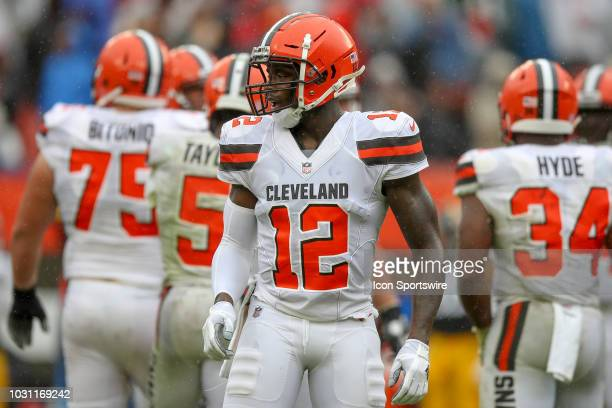 Cleveland Browns wide receiver Josh Gordon on the field during the third quarter of the National Football League game between the Pittsburgh Steelers...
