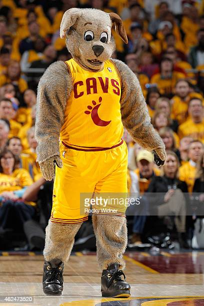 Cleveland Cavaliers mascot Moondog excites the crowd during the game against the Oklahoma City Thunder on January 25 2015 at Quicken Loans Arena in...