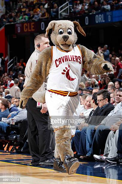 Cleveland Cavaliers mascot Moondog looks on during the game against the Orlando Magic on November 23 2015 at Quicken Loans Arena in Cleveland Ohio...