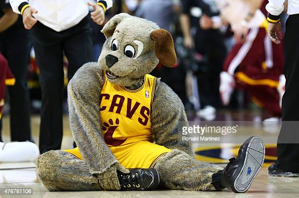 Cleveland Cavaliers mascot Moondog stretches prior to Game Four of the 2015 NBA Finals between the Golden State Warriors and the Cleveland Cavaliers...