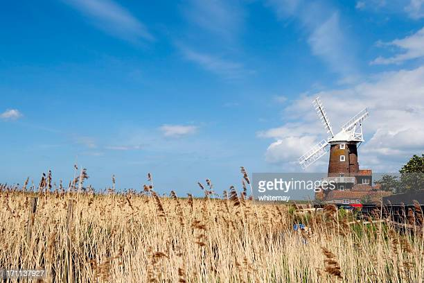 Cley mill with reed beds