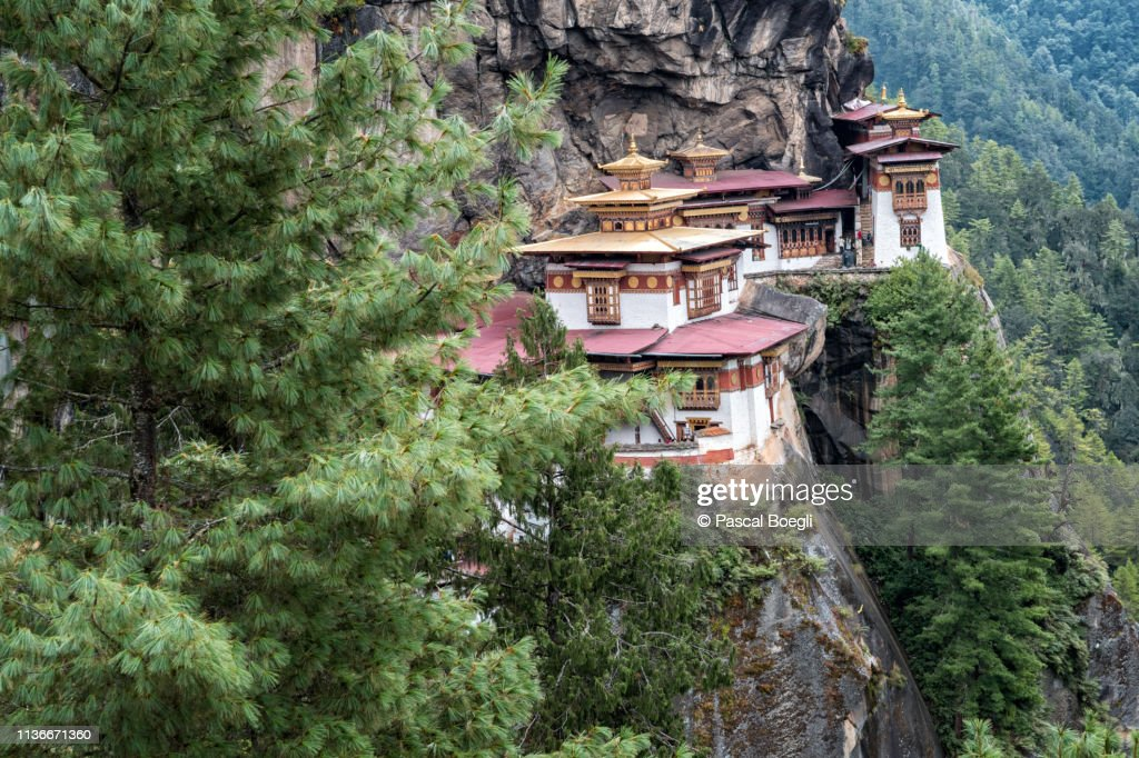 Cliff and forest at Taktsang monastery (Tiger's Nest), Bhutan : Stock Photo