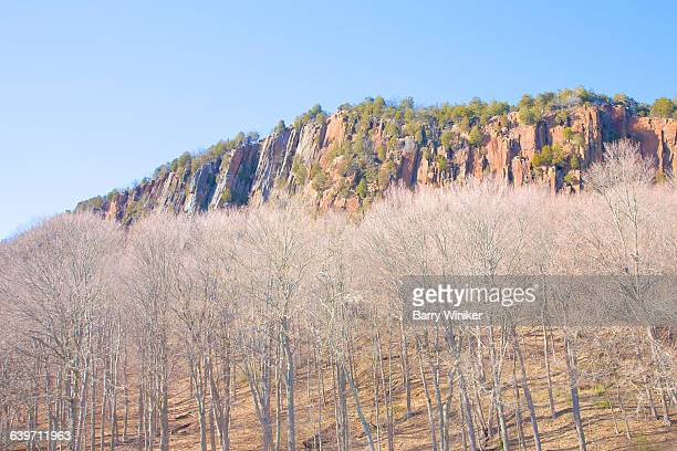cliff at sw face of west rock, new haven - ニューヘイブン ストックフォトと画像
