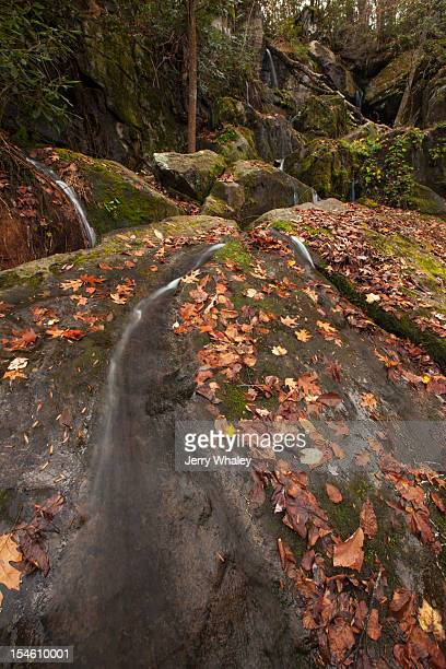 cliff branch falls in the smokies - roaring fork motor nature trail stock pictures, royalty-free photos & images