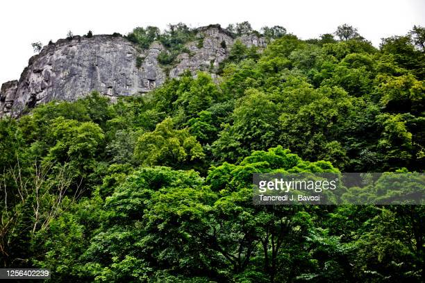 cliff face at high tor in matlock bath derbyshire peak district - bavosi stock pictures, royalty-free photos & images