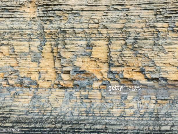 Cliff face showing strata of rocks; The Glamorgan Heritage Coast, Glamorgan, South Wales, UK. June.