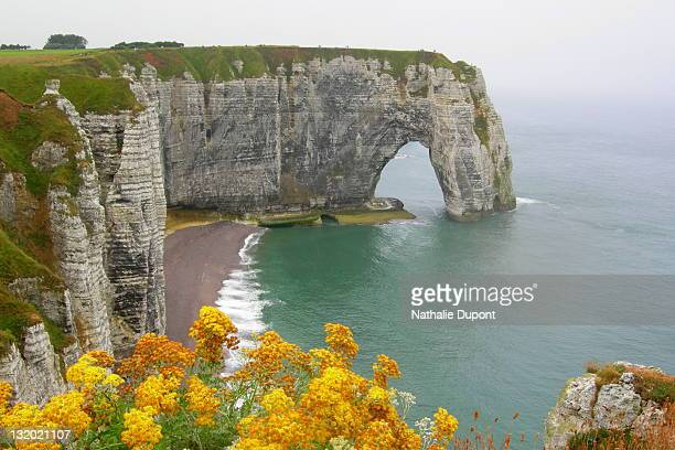 Cliff of limestone of Etretat