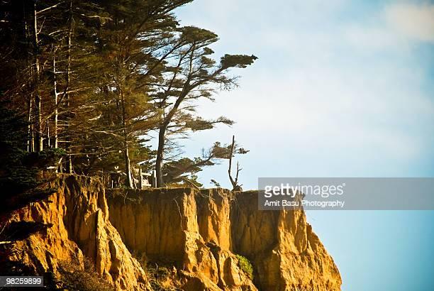 Cliff on California coast
