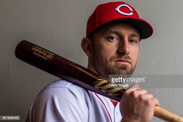 Cliff Pennington of the Cincinnati Reds poses for a portrait at the Cincinnati Reds Player Development Complex on February 20 2018 in Goodyear Arizona