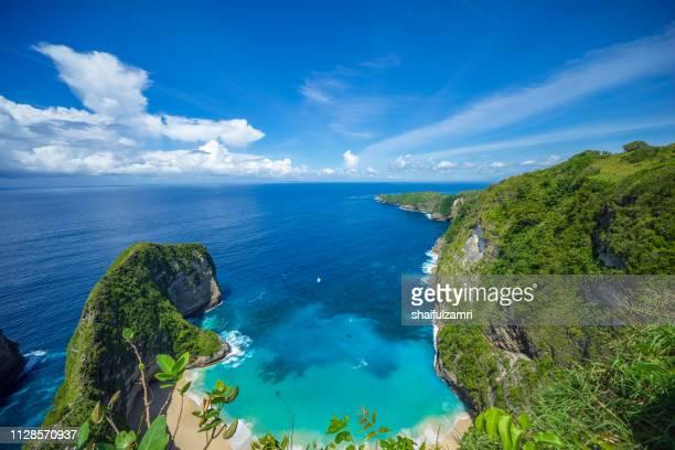 cliff view of kelingking beach at nusa penida, bali, indonesia. - shaifulzamri 個照片及圖片檔