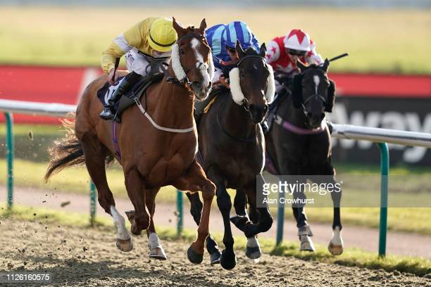 Clifford lee riding Made Of Honour win The Ladbrokes Home Of The Odds Boost/EBF Fillies' Handicap at Lingfield Park Racecourse on January 30 2019 in...