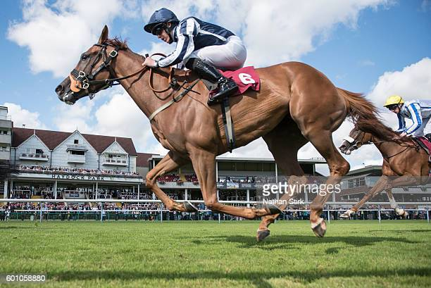 Clifford Lee riding Sister Dude during The ApolloBET Bet On Lotteries Fillies Handicap Stakes at Haydock Park Racecourse on August 4, 2016 in...
