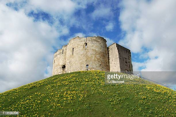 cliffords tower - tower stock pictures, royalty-free photos & images