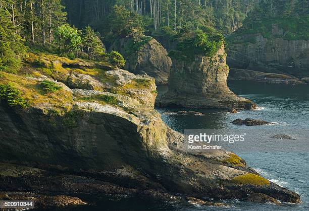 Cliffs and seastacks, Cape Flattery, Washington State