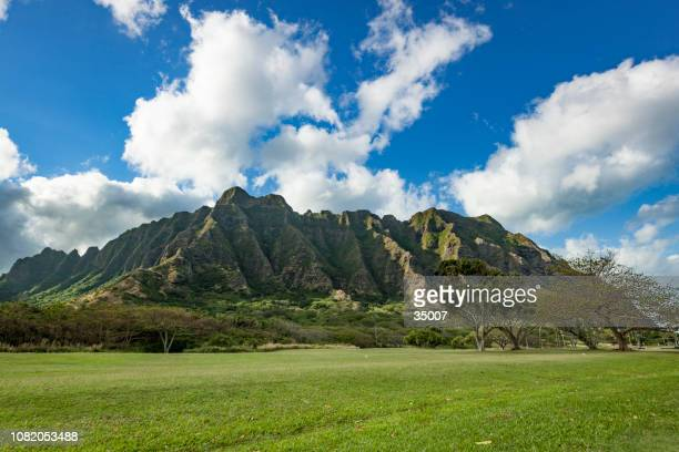 cliffs and trees of kualoa ranch, oahu island, hawaii islands - ranch stock pictures, royalty-free photos & images