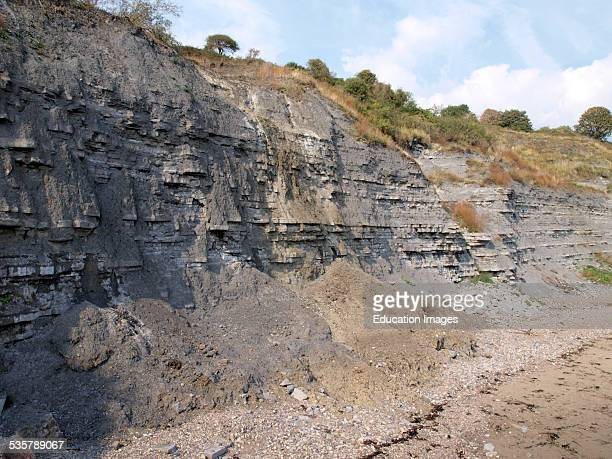 Cliffs at Lyme Regis Dorset UK