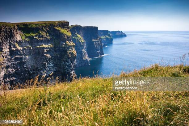 Cliffs of Moher in Ireland during a sunny Summer's day