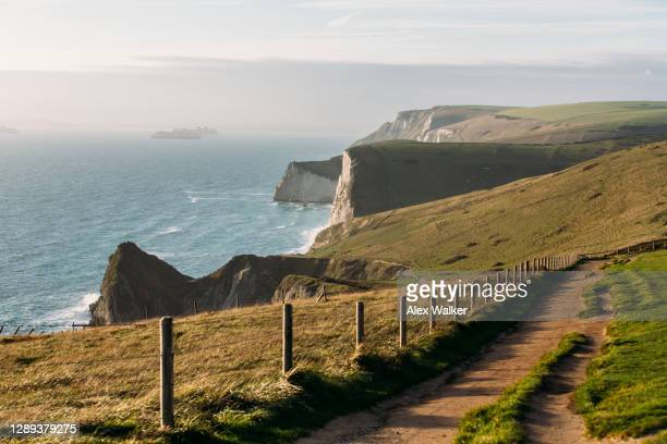 cliffs rock formations on the dorset coastline at durdle door - passenger craft stock pictures, royalty-free photos & images