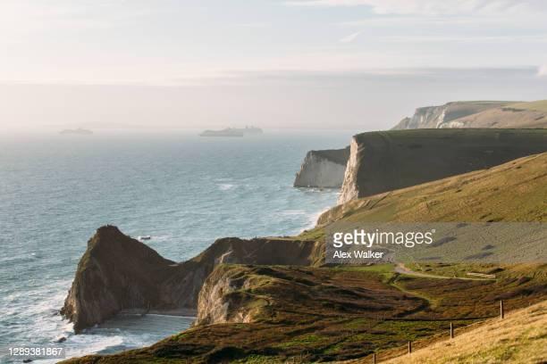 cliffs rock formations on the dorset coastline at durdle door - イングランド南西部 ストックフォトと画像