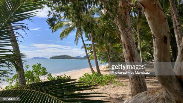 clifton beach - cairns stock photos and pictures