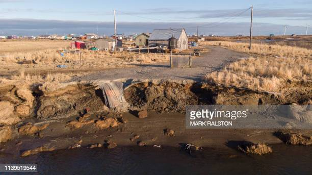 Climate change erosion caused by melting permafrost tundra and the disappearance of sea ice which formed a protective barrier threatens houses from...