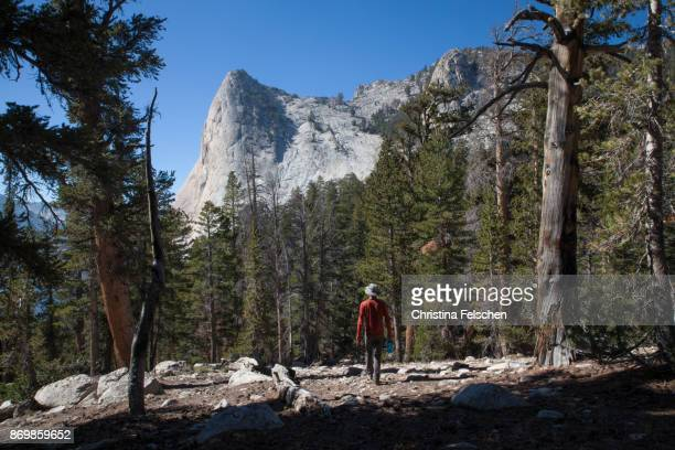 climber in front of charlotte dome, eastern sierra nevada, california, usa - christina felschen stock pictures, royalty-free photos & images