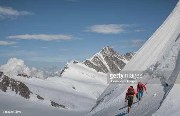 climbers on a snowy slope - 冠雪 ストックフォトと画像