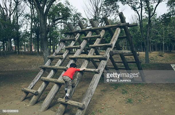 climbing up - peter lourenco 個照片及圖片檔