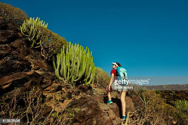 climbing up the mountains - tenerife stock pictures, royalty-free photos & images
