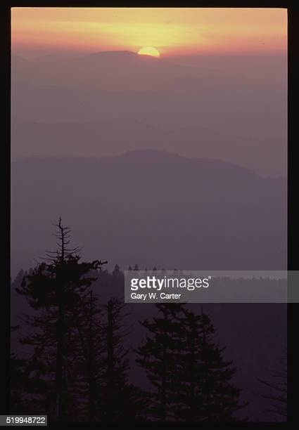 clingman dome at sunrise - clingman's dome stock photos and pictures