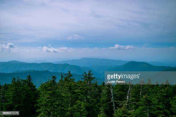 clingman's dome overlook - clingman's dome stock photos and pictures