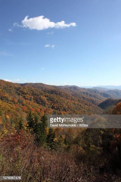 clingman's dome - clingman's dome stock photos and pictures