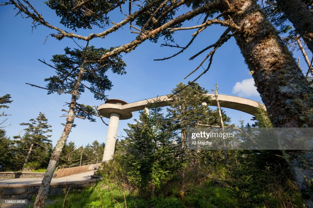 Clingmans Dome : Stock Photo