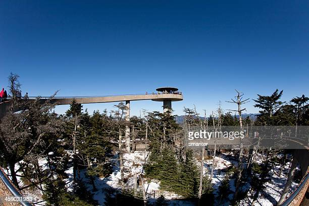 clingmans dome - clingman's dome - fotografias e filmes do acervo