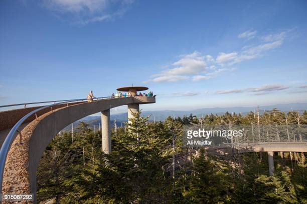 clingmans dome - parque nacional das great smoky mountains - fotografias e filmes do acervo