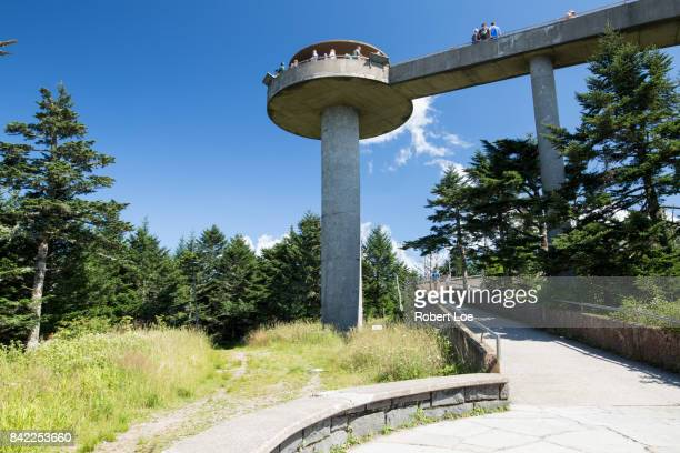 clingman's dome tower - clingman's dome - fotografias e filmes do acervo